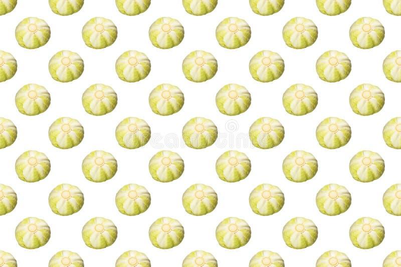 Σχέδιο άσπρων λάχανων που απομονώνεται στο άσπρο υπόβαθρο στοκ φωτογραφίες με δικαίωμα ελεύθερης χρήσης