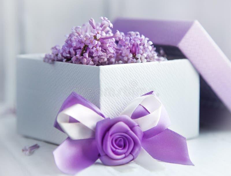 Σχέδιο δώρων στο ιώδες χρώμα Κιβώτιο με την κορδέλλα και την ανθίζοντας πασχαλιά στοκ φωτογραφία με δικαίωμα ελεύθερης χρήσης
