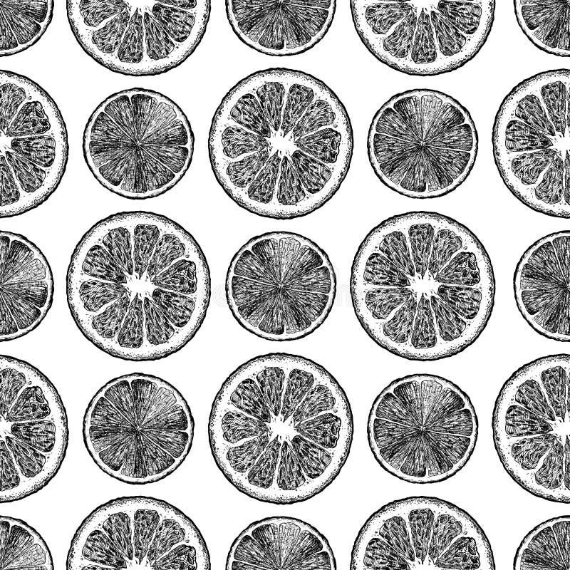 Σχέδιο με τα εσπεριδοειδή ελεύθερη απεικόνιση δικαιώματος