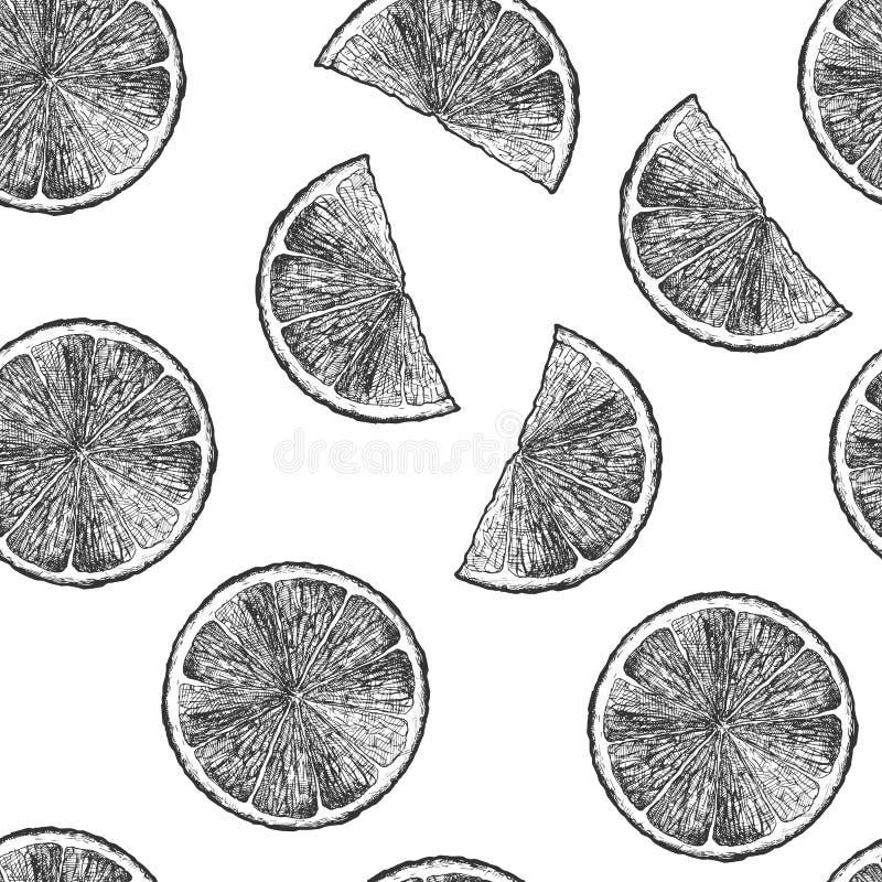 Σχέδιο με τα εσπεριδοειδή απεικόνιση αποθεμάτων
