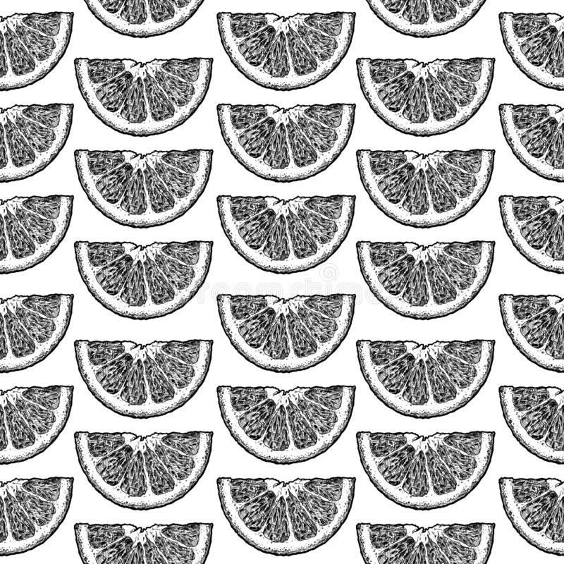 Σχέδιο με τα εσπεριδοειδή διανυσματική απεικόνιση