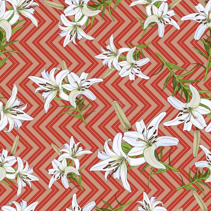 Σχέδιο με τα λουλούδια του άσπρου κρίνου σε ένα υπόβαθρο ρόδινος-κοραλλιών r απεικόνιση αποθεμάτων