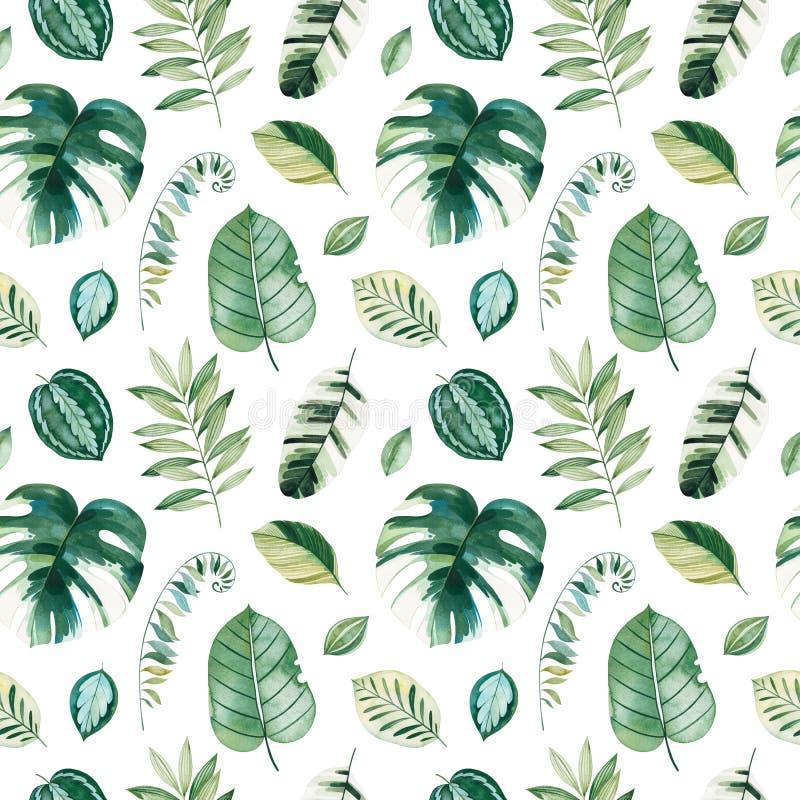 Σχέδιο με τα πράσινα φύλλα, κλάδοι, φύλλο φοινικών διανυσματική απεικόνιση