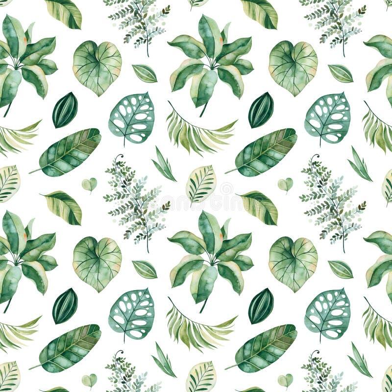 Σχέδιο με τα πράσινα φύλλα, κλάδοι, φύλλο φοινικών ελεύθερη απεικόνιση δικαιώματος
