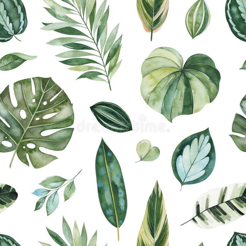 Σχέδιο με τα πράσινα φύλλα, κλάδοι, φύλλο φοινικών απεικόνιση αποθεμάτων