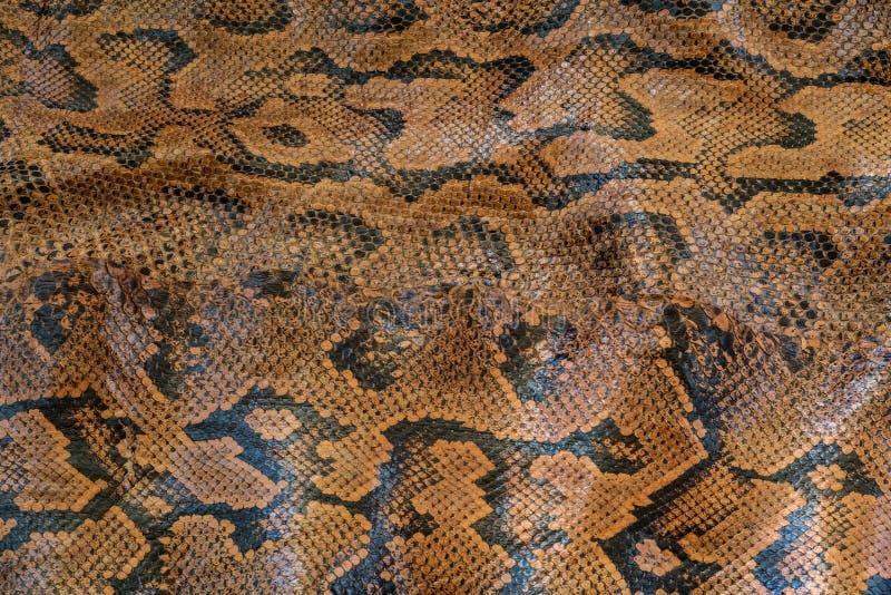 Σχέδιο Python snakeskin απεικόνιση αποθεμάτων