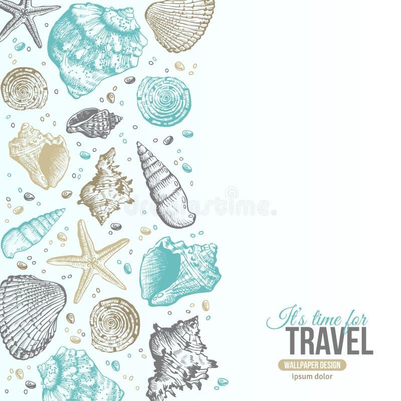 Σχέδιο καρτών κοχυλιών θερινής θάλασσας διανυσματική απεικόνιση