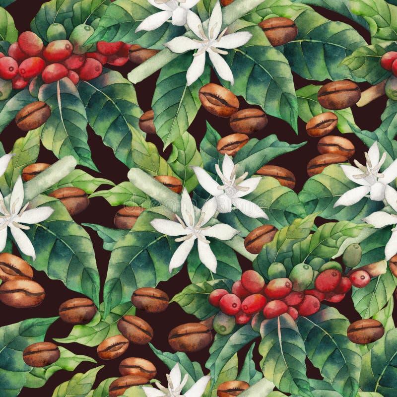 Σχέδιο καφέ Watercolor διανυσματική απεικόνιση