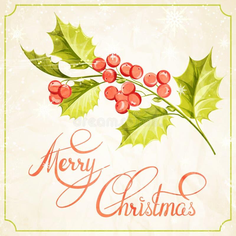 Σχέδιο κλάδων γκι Χριστουγέννων διανυσματική απεικόνιση