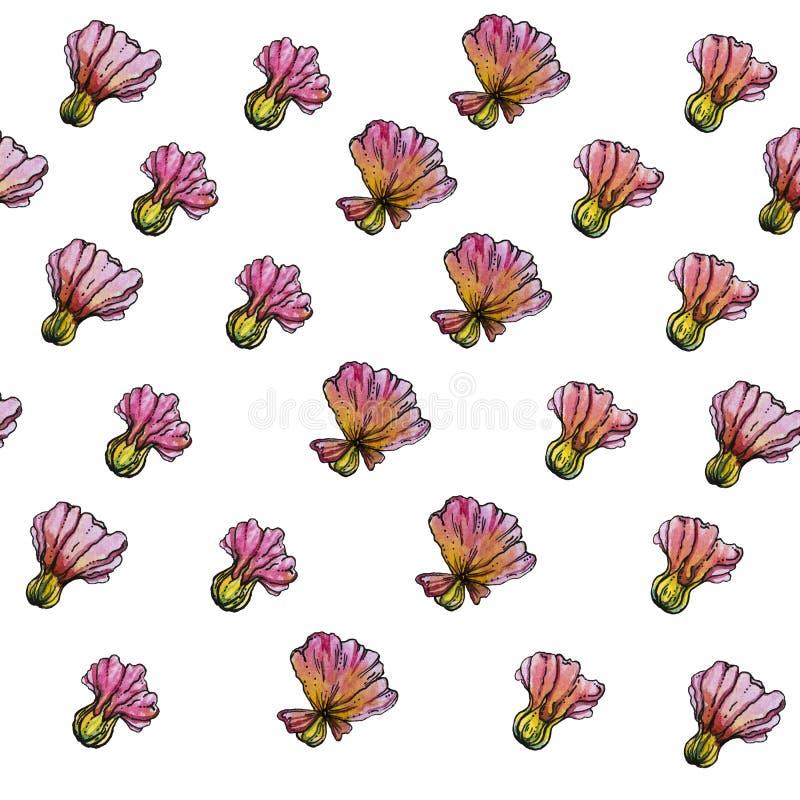 Σχέδιο λουλουδιών Watercolor, άσπρο υπόβαθρο στοκ εικόνες