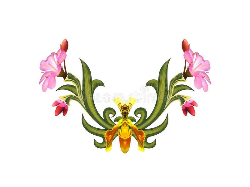 Σχέδιο των λουλουδιών και των φύλλων απεικόνιση αποθεμάτων