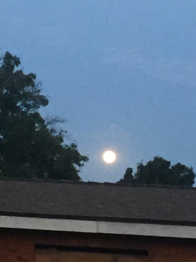Σχεδόν φεγγάρι πρωινού στοκ φωτογραφία με δικαίωμα ελεύθερης χρήσης