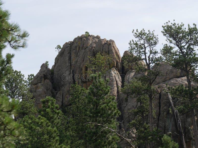 Σχηματισμοί βράχου, εθνική οδός βελόνων, νότια Ντακότα στοκ εικόνες με δικαίωμα ελεύθερης χρήσης