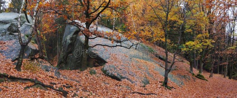 Download Σχηματισμός βουνών Kralky στους Vrchy λόφους Hostynske Στοκ Εικόνα - εικόνα από φύλλο, δημοκρατία: 62700459