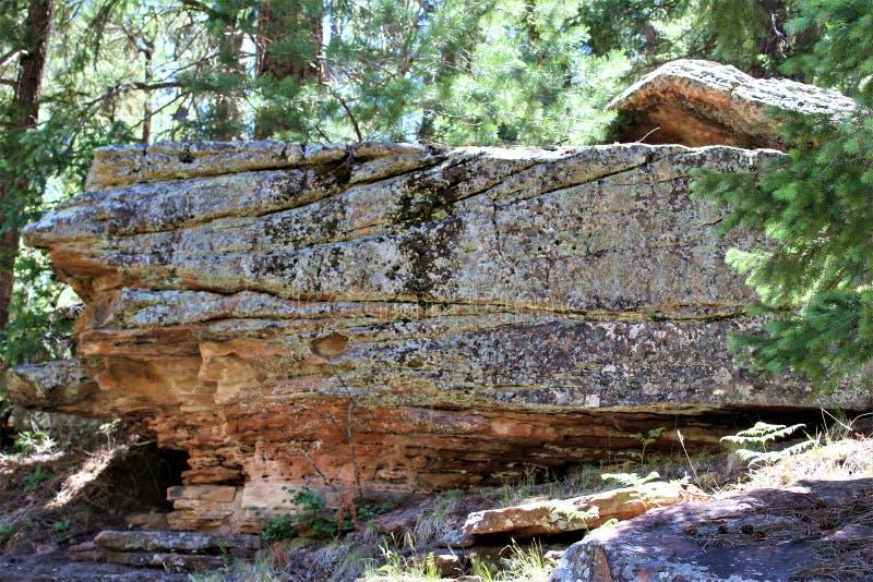 Σχηματισμός βράχου στη λίμνη φαραγγιών ξύλων, κομητεία Coconino, Αριζόνα, Ηνωμένες Πολιτείες στοκ φωτογραφία με δικαίωμα ελεύθερης χρήσης