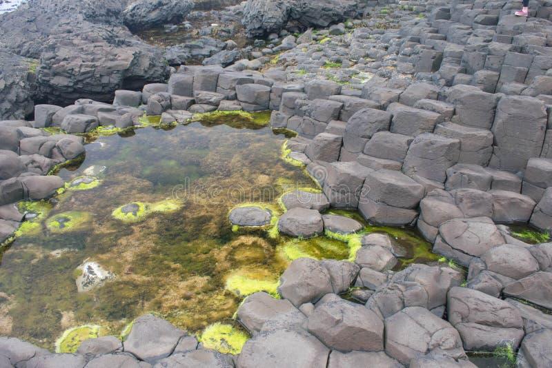 Σχηματισμός βράχου Casueway γιγάντων στοκ φωτογραφίες