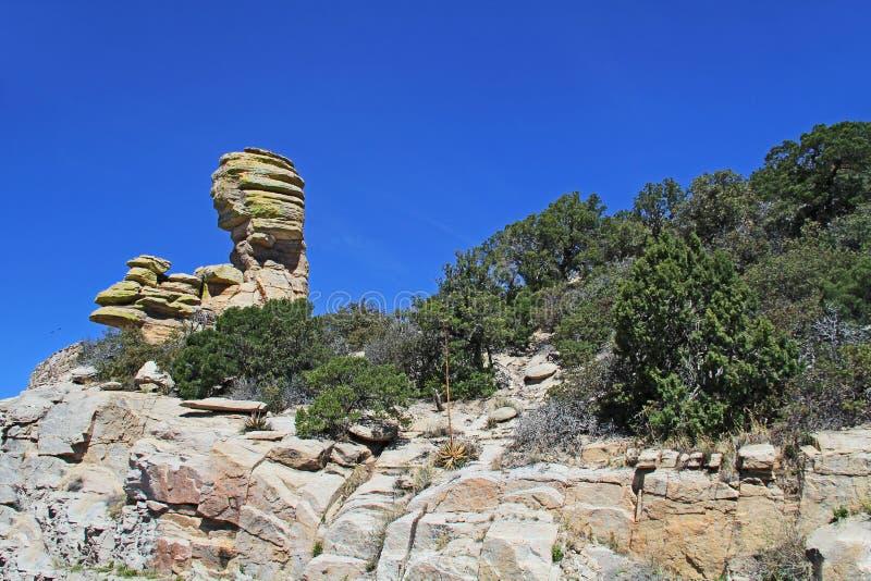 Σχηματισμός βράχου Hoodoo στο θυελλώδες σημείο στην ΑΜ Lemmon στοκ φωτογραφία με δικαίωμα ελεύθερης χρήσης