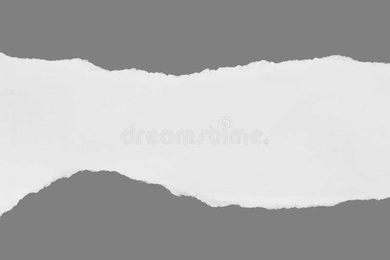 Σχισμένος σχίστε το έγγραφο στοκ φωτογραφία με δικαίωμα ελεύθερης χρήσης