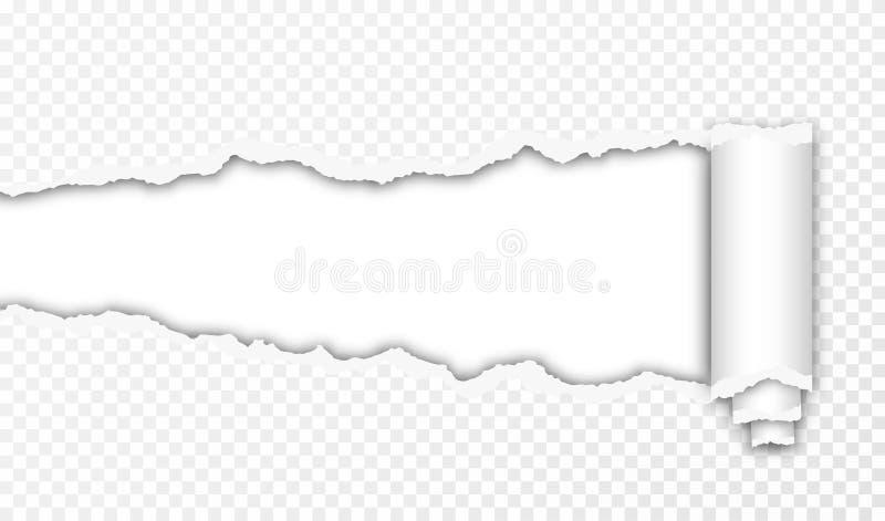 Σχισμένο έγγραφο με τις σχισμένες άκρες και το διαφανές διάστημα για σας σχέδιο Σύσταση εγγράφου με κυλημένος επάνω και σχισμένες διανυσματική απεικόνιση