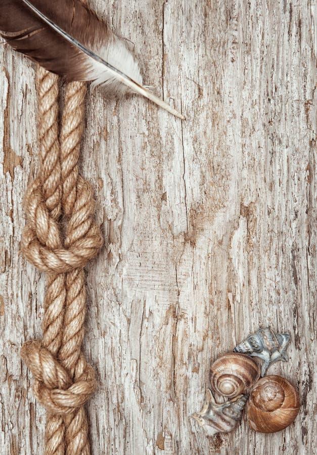 Σχοινί σκαφών, κοχύλια, φτερό και παλαιά ξύλινα σύνορα στοκ φωτογραφία με δικαίωμα ελεύθερης χρήσης