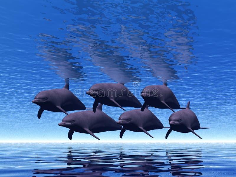 σχολείο δελφινιών απεικόνιση αποθεμάτων