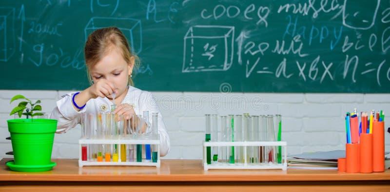 Σχολικό χημικό πείραμα r Ενδιαφέρουσα προσέγγιση που μαθαίνει Το παιδί επιθυμεί να πειραματιστεί Εξερευνήστε και στοκ εικόνα