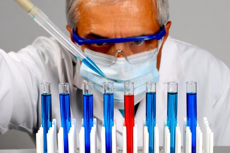 σωλήνες δοκιμής επιστημό& στοκ εικόνα