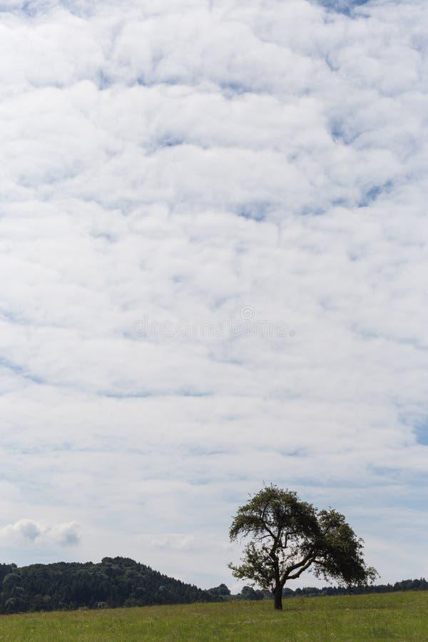 σωρείτης και cirrus θερινών σύννεφων στοκ φωτογραφίες