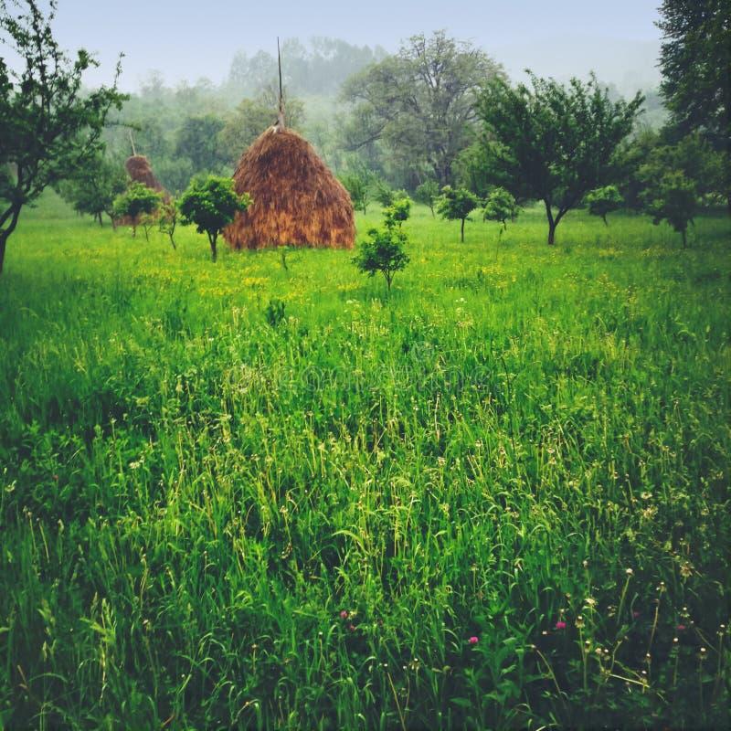 Σωροί κήπων και σανού στοκ εικόνες με δικαίωμα ελεύθερης χρήσης
