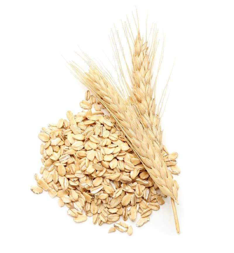 Σωρός ακατέργαστα oatmeal και spikelets στο άσπρο υπόβαθρο στοκ εικόνες