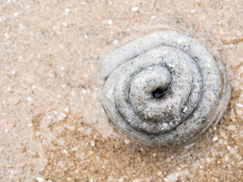 Σωρός της άμμου από την έκκριση lugworm στοκ εικόνες