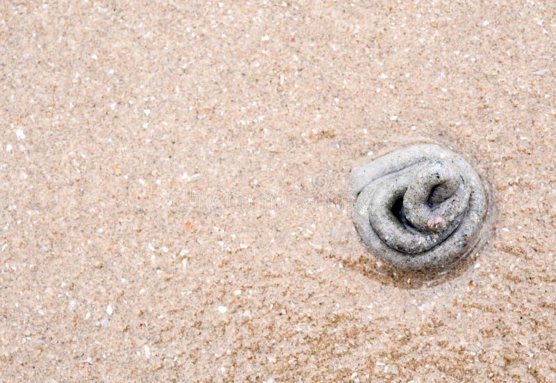 Σωρός της άμμου από την έκκριση lugworm στοκ εικόνα