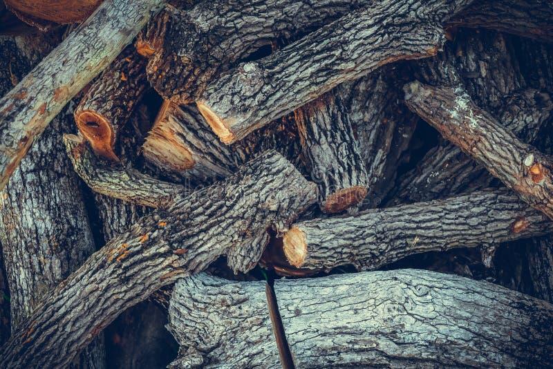 Σωρός του καυσόξυλου υπόβαθρο καυσόξυλου, σωροί του καυσόξυλου στο δάσος στοκ εικόνες