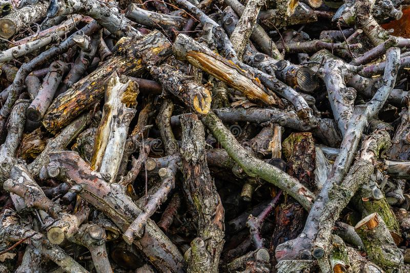 Σωρός του ξύλου, του κλάδου δέντρων και του κούτσουρου στοκ φωτογραφία με δικαίωμα ελεύθερης χρήσης
