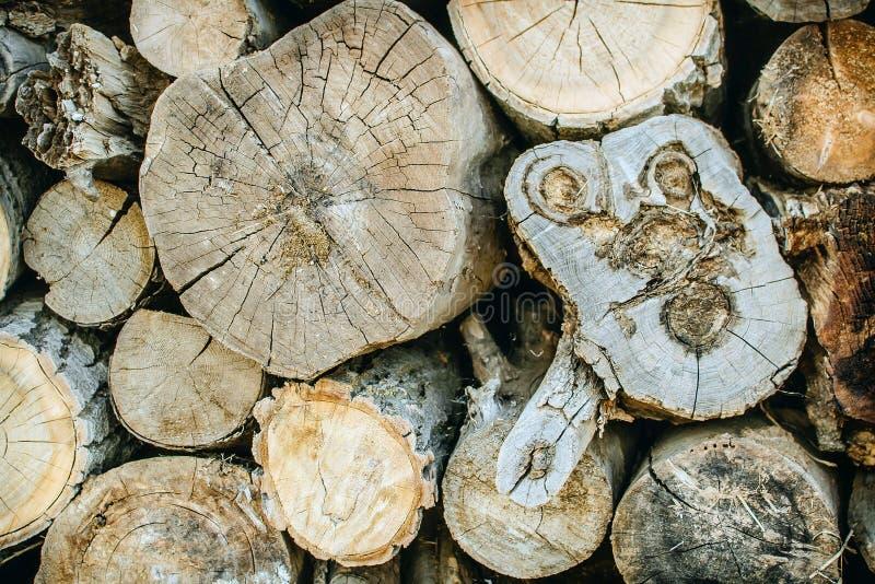 Σωρός του φυσικού ξύλινου υποβάθρου κούτσουρων στοκ φωτογραφία