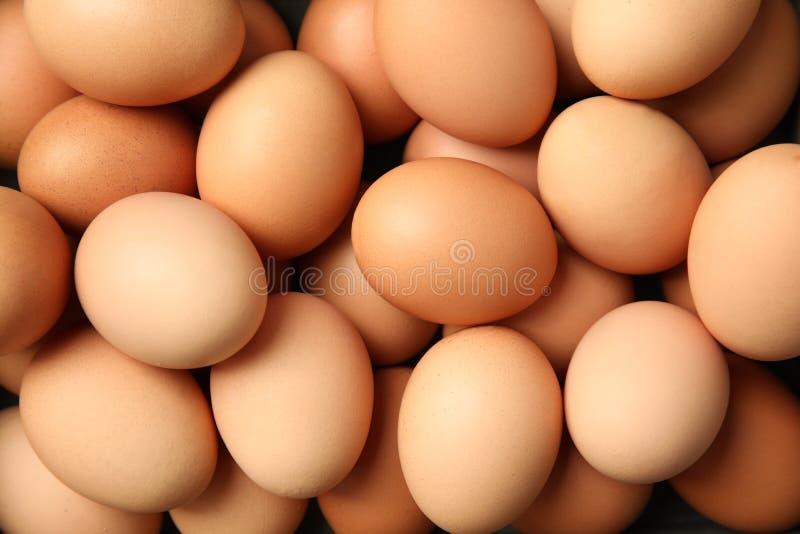 Σωρός των ακατέργαστων καφετιών αυγών κοτόπουλου στοκ εικόνες