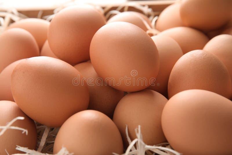 Σωρός των ακατέργαστων καφετιών αυγών κοτόπουλου στοκ εικόνες με δικαίωμα ελεύθερης χρήσης