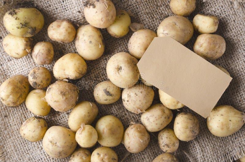 Σωρός των καινούριων πατατών στη τιμή sackckotch και εγγράφου για το κείμενο, τοπ άποψη Έννοια της πώλησης των φρέσκων πατατών στ στοκ φωτογραφίες