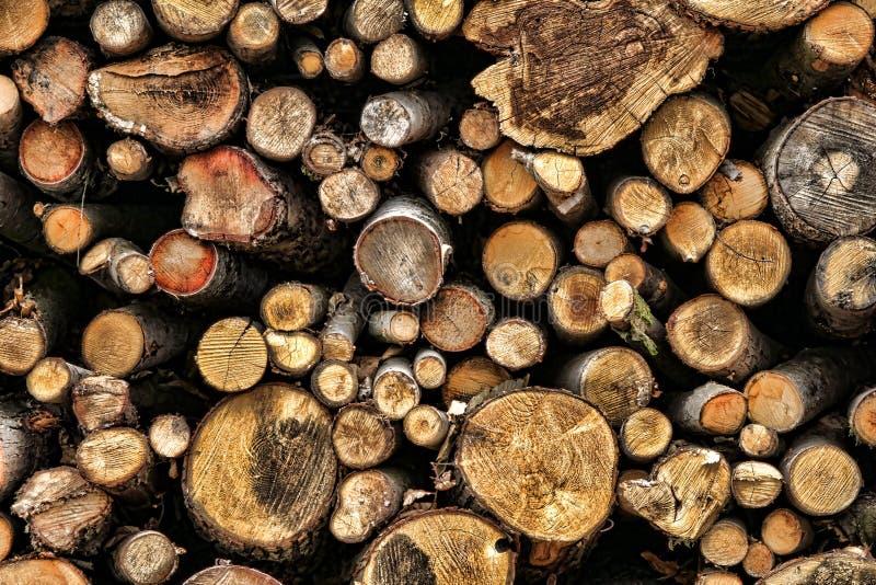 Σωρός των κομμένων ξύλινων κούτσουρων για τα καύσιμα καυσόξυλου στοκ φωτογραφία