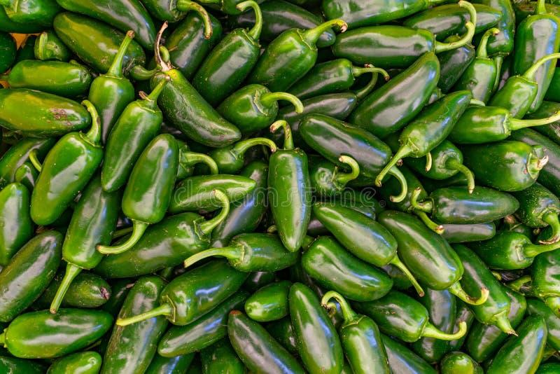 Σωρός των πιπεριών Jalapeno για την πώληση στοκ εικόνες