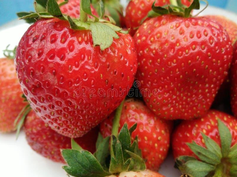 Σωρός των φρέσκων ώριμων φρούτων φραουλών με πράσινο sepal στοκ φωτογραφία με δικαίωμα ελεύθερης χρήσης