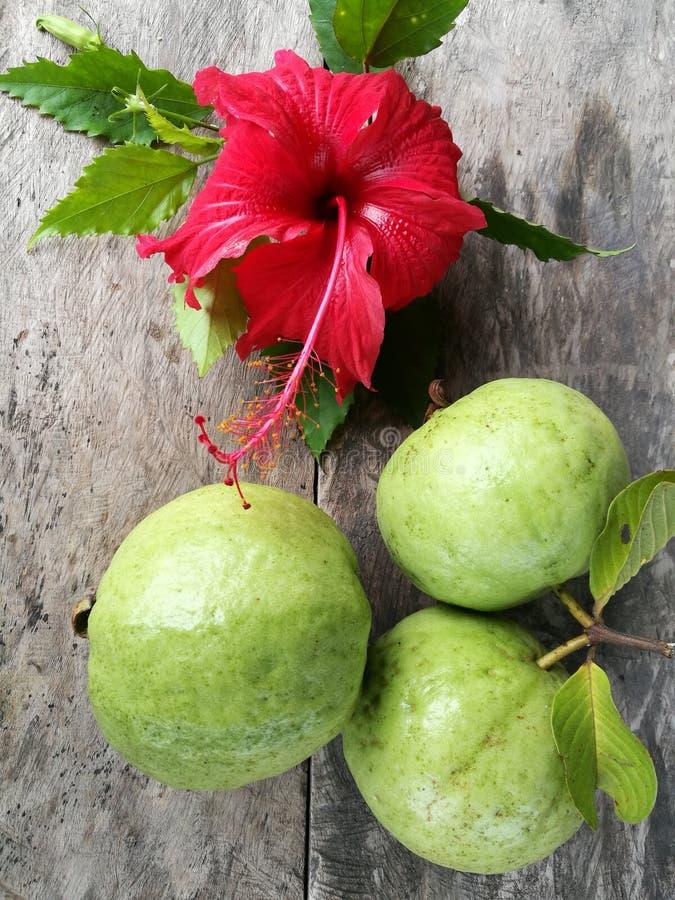Σωρός των φρούτων γκοϋαβών από το αγρόκτημα με το κόκκινο λουλούδι παπουτσιών στο ξύλινο επιτραπέζιο πάτωμα, κατάταξη των εξωτικώ στοκ φωτογραφία