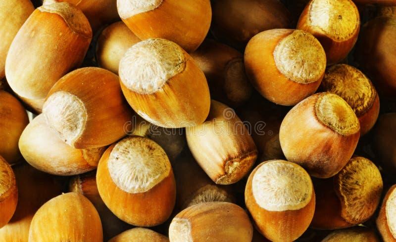 σωρός φουντουκιών τροφίμων ανασκόπησης στοκ εικόνα με δικαίωμα ελεύθερης χρήσης