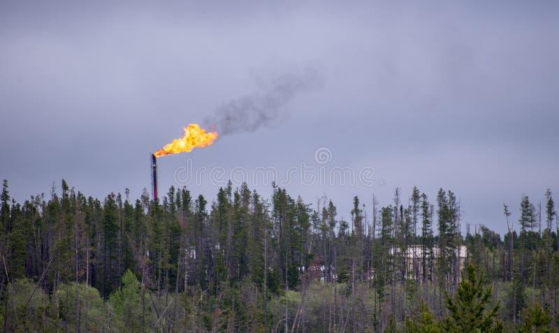 Σωρός φλογών με τις φλόγες επάνω από το treeline στην πετρελαιοφόρο περιοχή στοκ φωτογραφίες με δικαίωμα ελεύθερης χρήσης