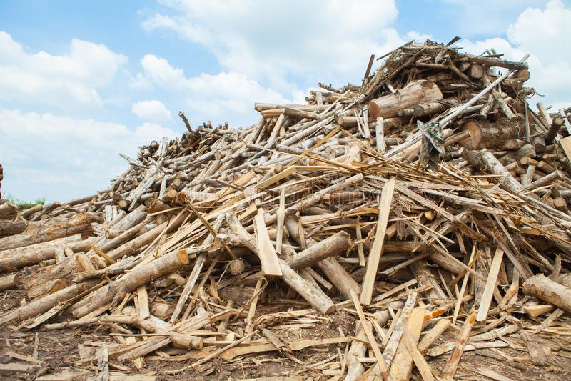 Σωρός teak του ξύλινου κούτσουρου στοκ φωτογραφία με δικαίωμα ελεύθερης χρήσης