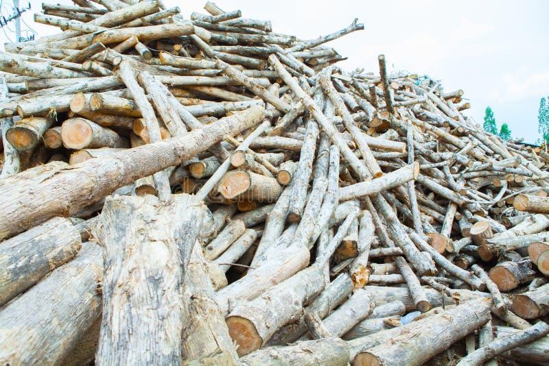 Σωρός teak του ξύλινου κούτσουρου στοκ εικόνα