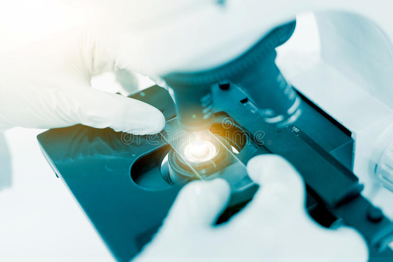 Σωλήνας εργαστηριακών τεστ εκμετάλλευσης χεριών επιστημόνων, εργαστήριο επιστήμης στοκ φωτογραφία με δικαίωμα ελεύθερης χρήσης