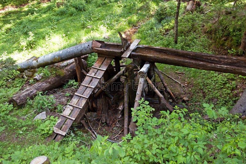 Σωλήνας και η ξύλινη γούρνα στο δάσος στοκ φωτογραφία