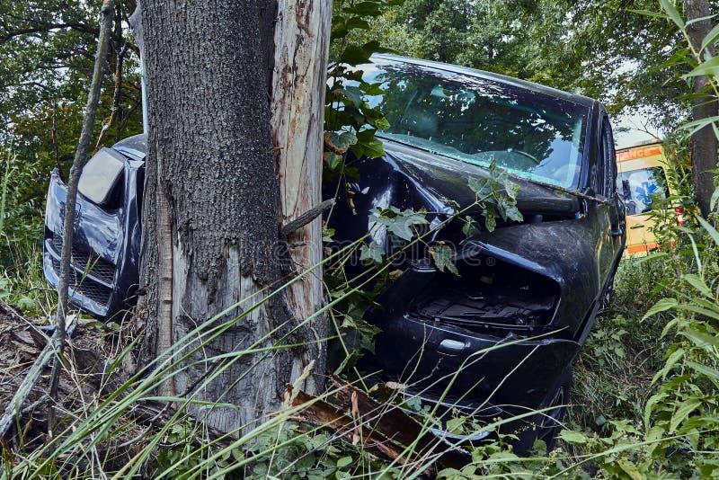 Σύγκρουση διασταυρώσεων με ένα δέντρο σε έναν δρόμο στη σκηνή ενός τροχαίου στοκ εικόνες με δικαίωμα ελεύθερης χρήσης