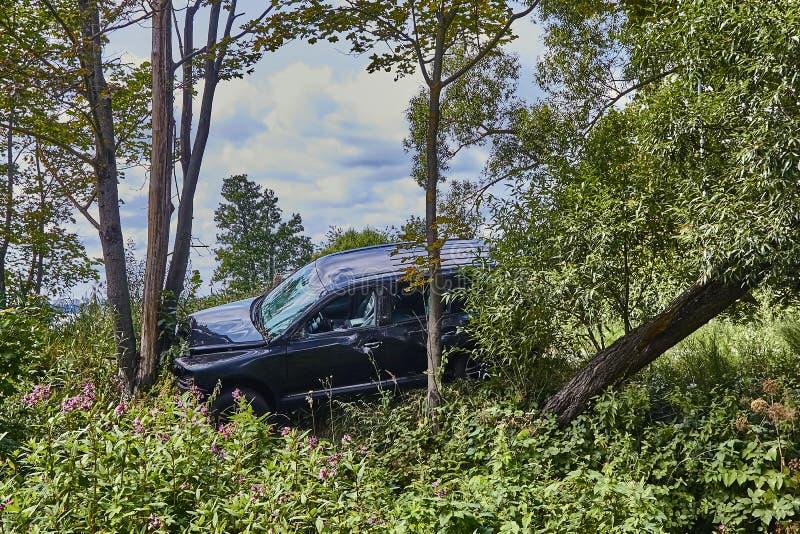 Σύγκρουση διασταυρώσεων με ένα δέντρο σε έναν δρόμο στη σκηνή ενός τροχαίου στοκ εικόνες